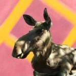 Land Of Elks